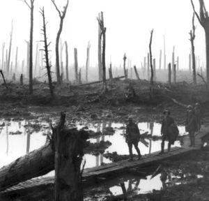 300px-chateau_wood_ypres_1917.jpg