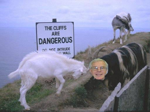 goat-on-copeland.jpg