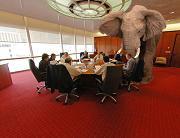 elephant-in-the-room-harrison1.JPG