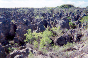 Limestone karst after phosphate mining in Nauru