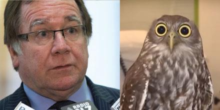 Murray McCully and owl