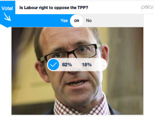 tpp-online-poll