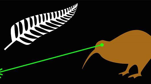 Kiwi laser eyes flag